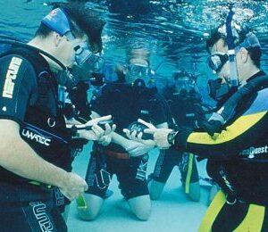 Dykning i Bassäng